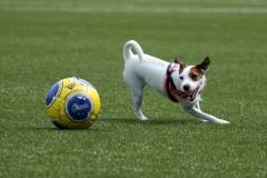 Fotbolls-Wilma 100718